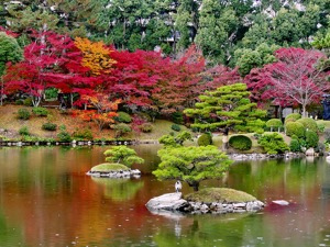 Toursgallery Brings you Japan in Autumn